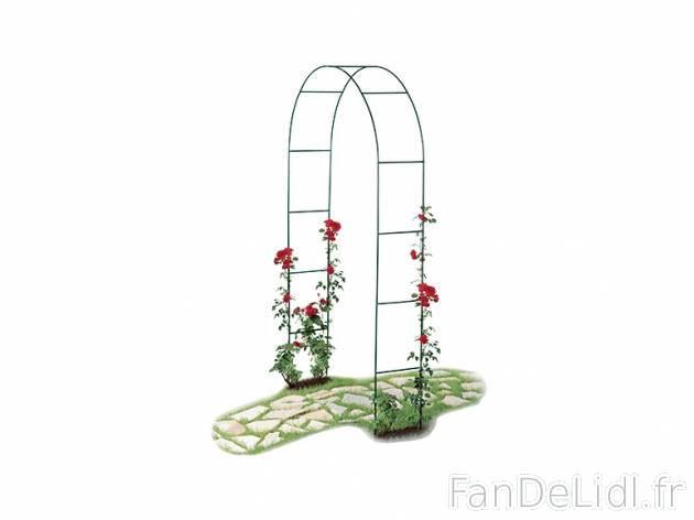 arceau de jardin maison design. Black Bedroom Furniture Sets. Home Design Ideas
