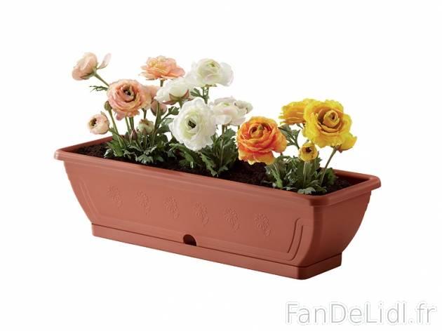 Jardini re ou pot s jardin fan de lidl fr for Catalogue jardin lidl 2016