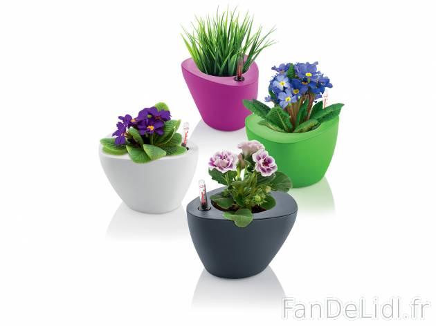 pot de fleurs rond jardin fan de lidl fr. Black Bedroom Furniture Sets. Home Design Ideas