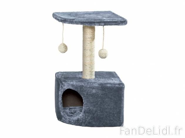 arbre chat petit animals domestique chats et chiens. Black Bedroom Furniture Sets. Home Design Ideas