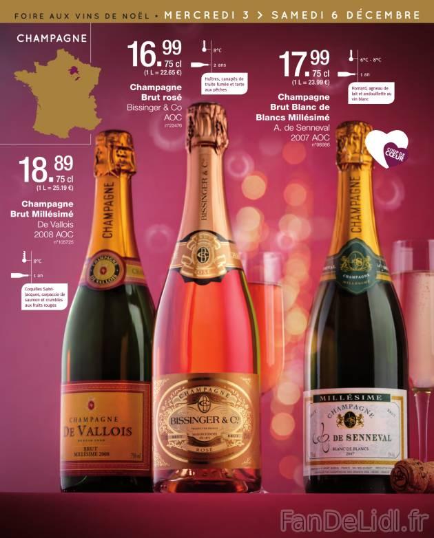 champagne 411